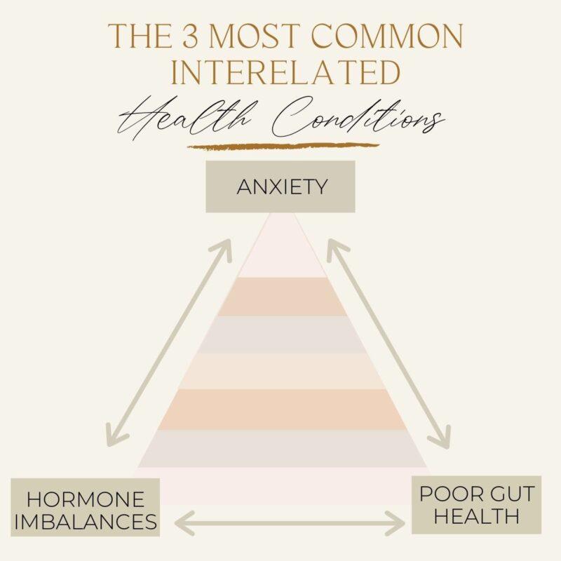 Meg De Jong nutrition hormones gut health anxiety
