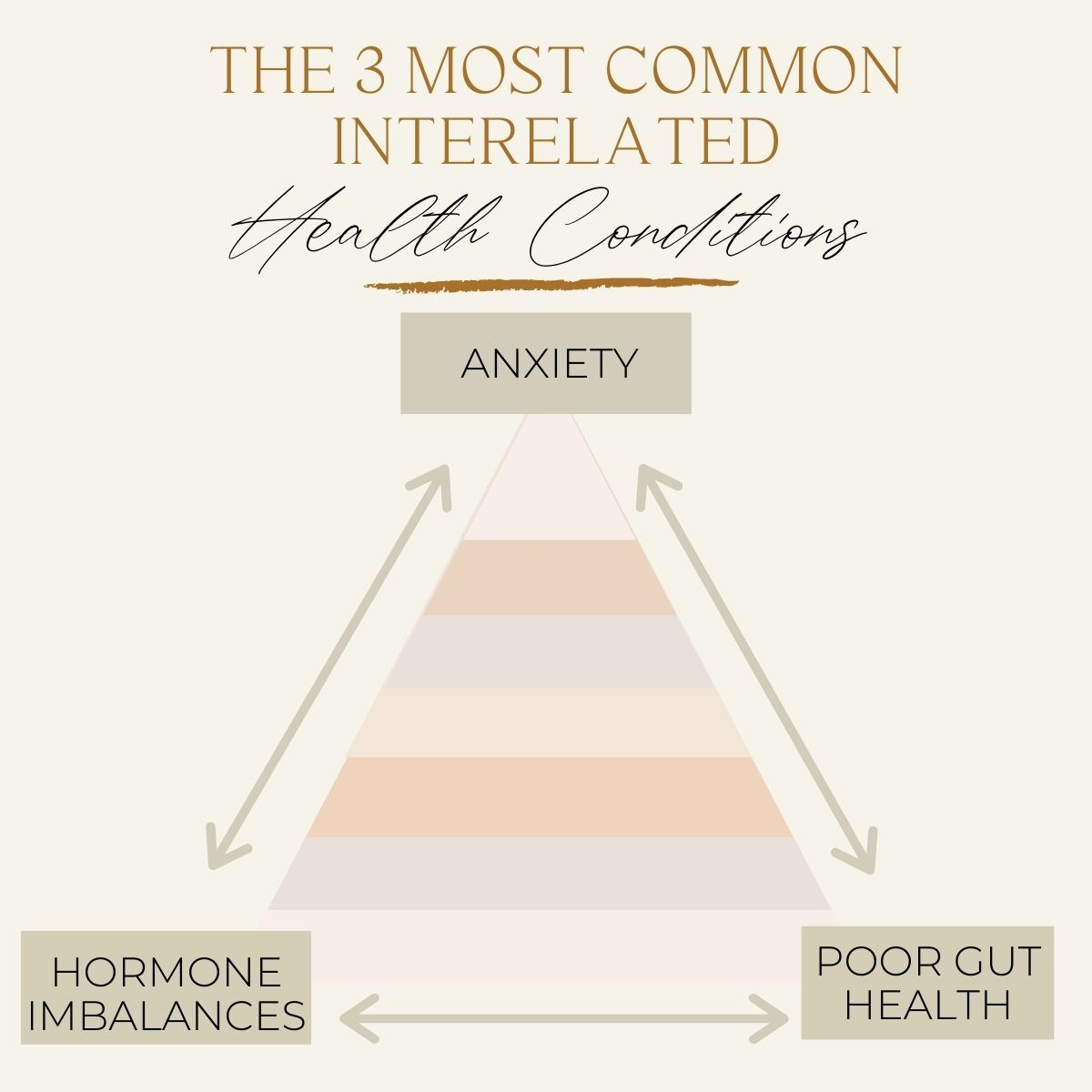 Anxiety-Gut-health-hormones